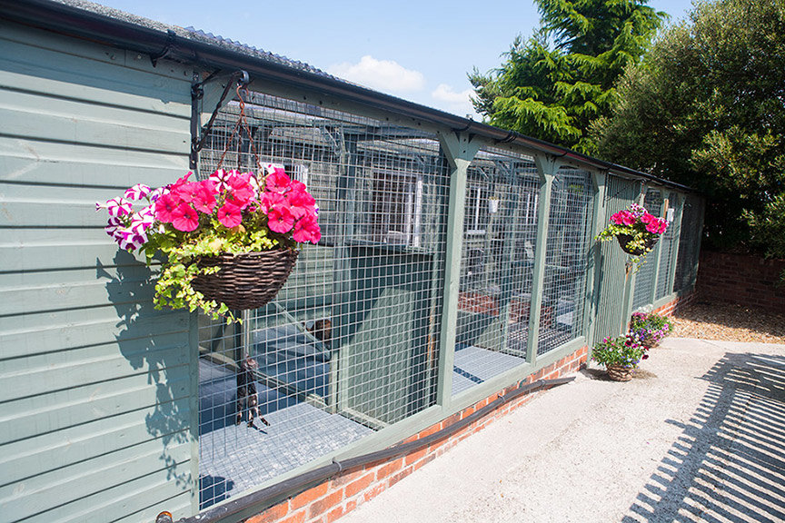 Cattery in Chesterfield